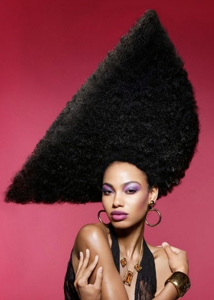 Natural afro hairstyles for women pictures