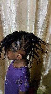 Natural twist hairstyles