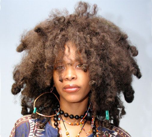 Erykah Badu Hair Stylist New Natural Hairstyles