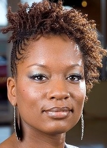 Short Twist Natural Hair Styles 2