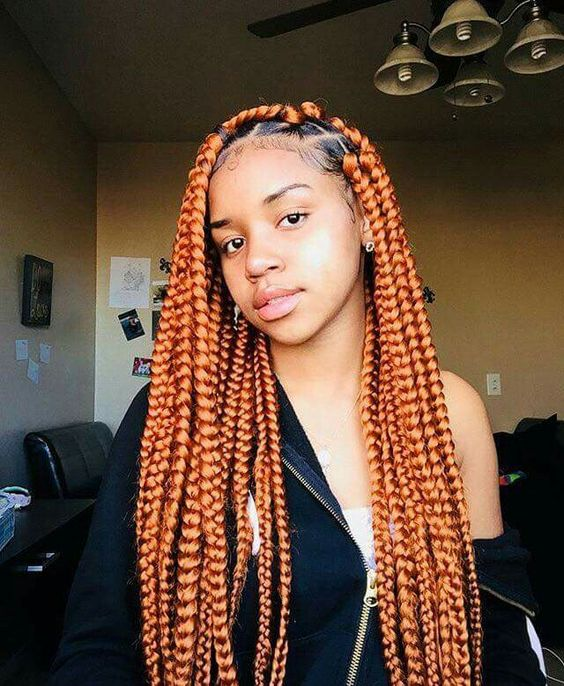50 Long Box Braids Master Collection New Natural Hairstyles
