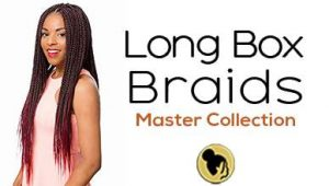 50 Long Box Braids Master Collection