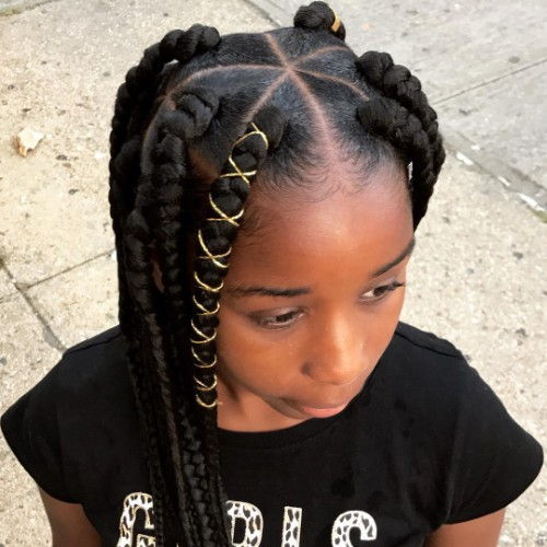 Box Braids Hairstyles for Dark Women