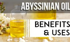 Abyssinian Oil Benefits and Uses